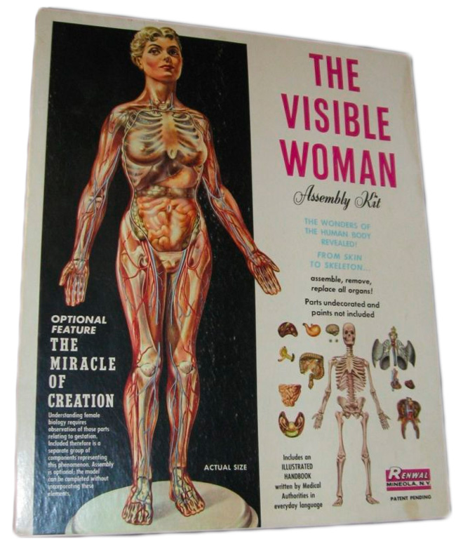 visible_woman_retro