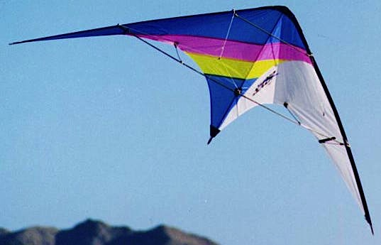 A Skynasaur Slicer flies over Roach Lake, Nevada, in 1996. Photo by Hoy Quan/BFK.net.