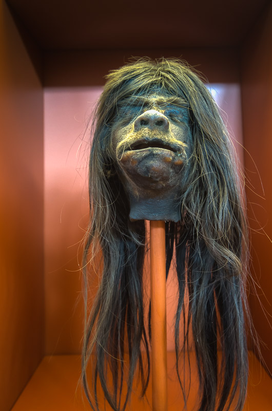 One of the shrunken heads, which may or may not be fake, at the Redpath Museum in Montreal. (Via MontrealInPictures.com)