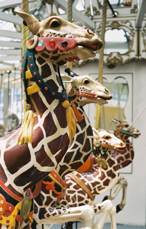 The jumping giraffes get smaller as you go inward at the four-abreast 1906 Looff carousel at the Children's Creativity Museum in San Francisco. (© Aaron Shepard, via carousels.org)
