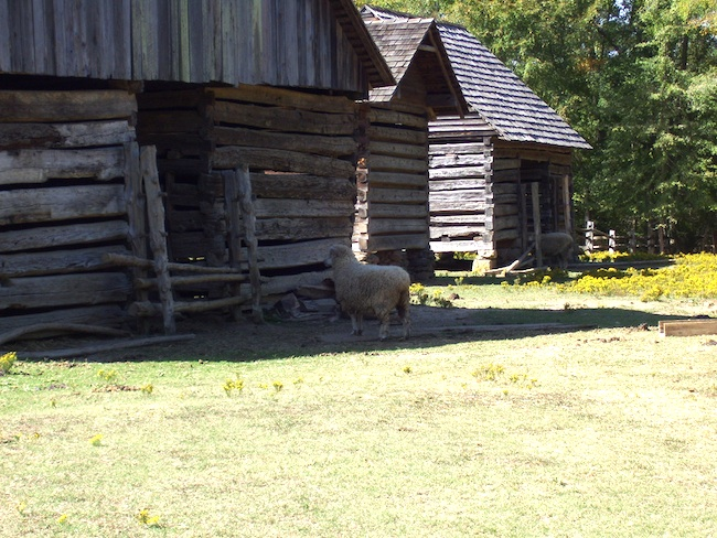 Wooden structures at Latta Plantation. (Photo by Arnold Modlin)